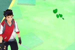 ポケモンGO-葉っぱ・木の葉・三つ葉のクローバー