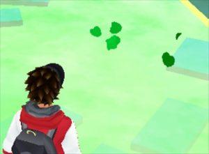 ポケモンGO-葉っぱ・木の葉・三つ葉のクローバー2